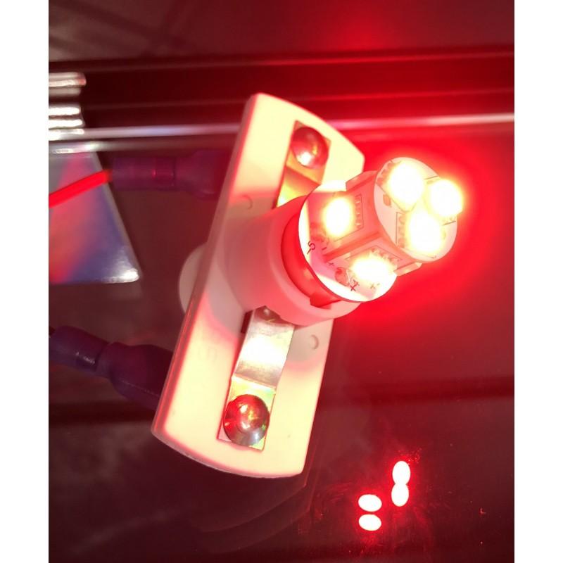 AMPOULES 8 LEDS - 24V - BLANC