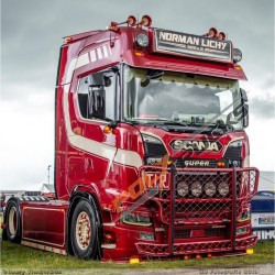 TRUX SCANIA NTG PARE BUFFLE - HIGHWAY