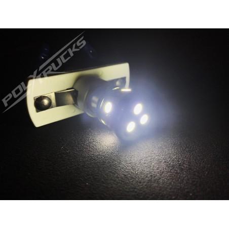 AMPOULE 8 LEDS - 24V - BLANC